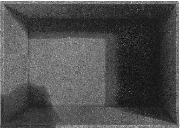 0_karol-pomykala-linocut-printmaking-it=seemet-to-mr-2