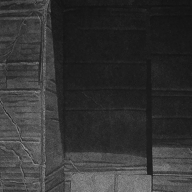 2_karol-pomykala-linocut-printmaking-changes-2