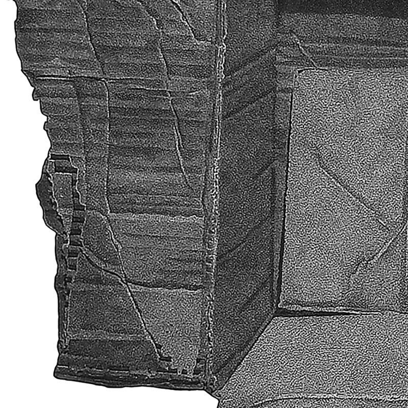 4_karol-pomykala-linocut-printmaking-changes-2