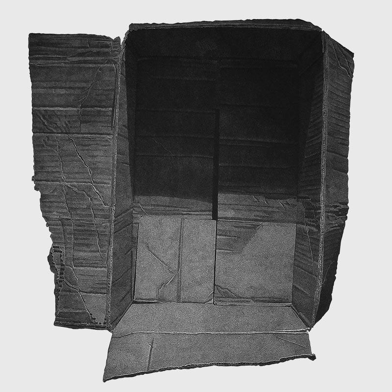 5_karol-pomykala-linocut-printmaking-changes-2